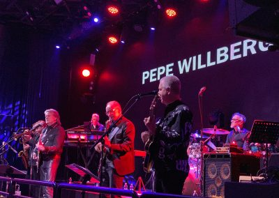 Pepe Willberg & Professionals